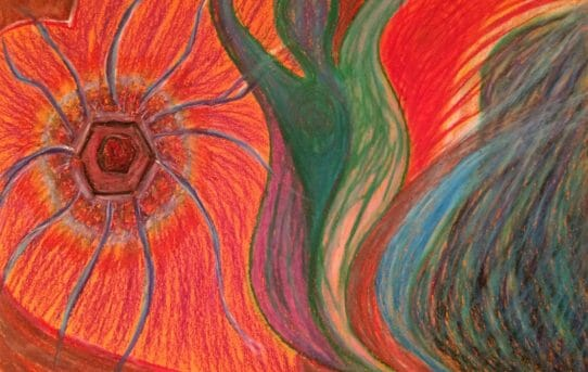 Longing for the Home Within: A seed growing in my heart